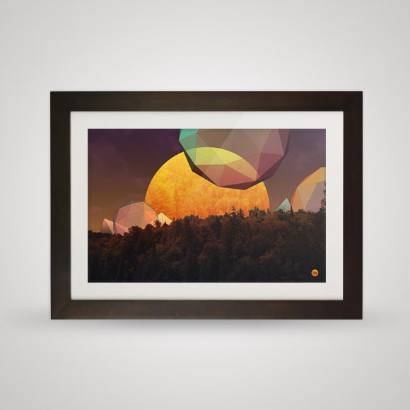 Free posters - Rising forest - In frame