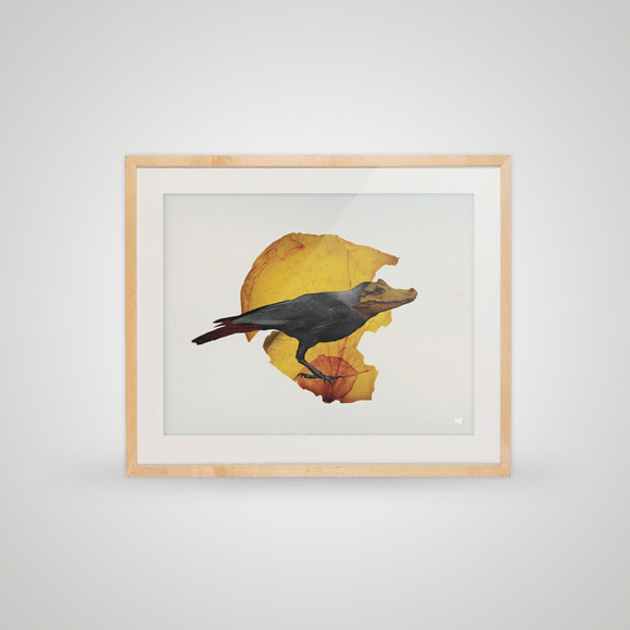 Free posters - Feathers and teeth - In frame