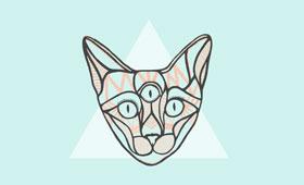 A cat poster
